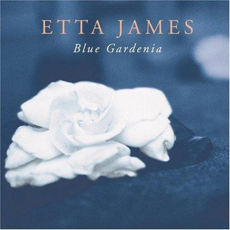 etta james never meant love lyrics