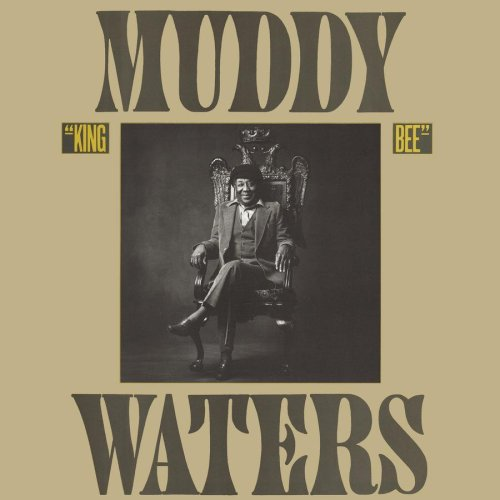I Feel Like Going Home Muddy Waters Lyrics