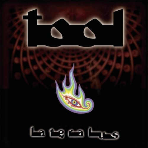 lateralus cd cover photo